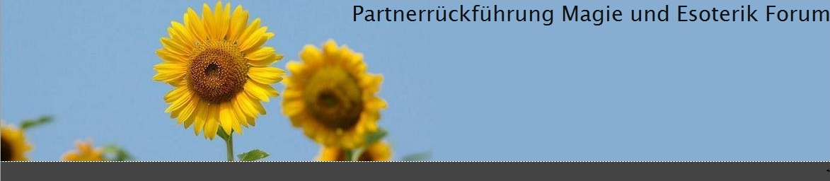 Forum für Partnerrückführung, Partnerzusammenführung